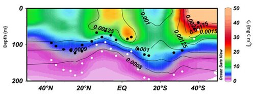 Vertical section of Cf (colour scale) and particle backscattering coefficient (bbp(470), contour lines). Position of euphotic depth (Zeu, black dots) and 1.5Zeu (white dots).